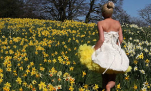 Yellow Petticoats